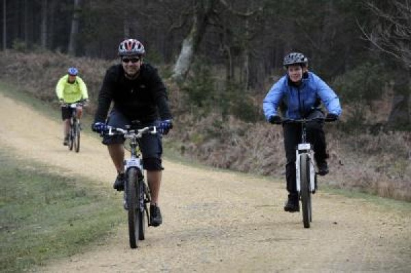New Forest Spring MTB