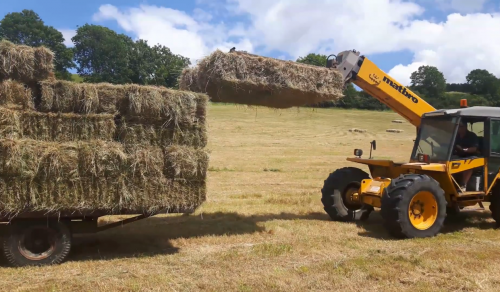 Haymaking in Dorset - Part 7