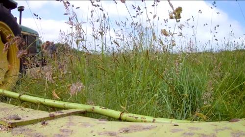Haymaking in Dorset - Part 2